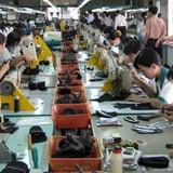 """Vào TPP, Việt Nam sẽ mắc phải """"lời nguyền tài nguyên""""?"""