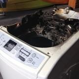 Nối gót Galaxy Note 7, máy giặt của Samsung phát nổ