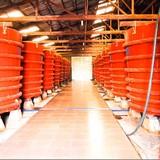 Chất lượng nước mắm: Người tiêu dùng cần biết mình đang ăn gì