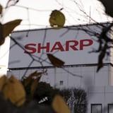 Apple sẽ sử dụng màn hình OLED của Sharp trên các iPhone tương lai?