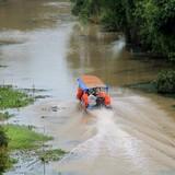 Con đường xuyên rừng tràm đẹp nhất Việt Nam