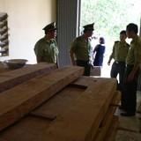 Quảng Bình: Giám đốc sở trữ gỗ lậu ở cơ quan