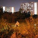 Đằng sau cao ốc chọc trời Sài Gòn: Người cắm câu, soi ếch đêm kiếm sống