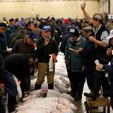 Phiên đấu giá sôi động đầu năm tại chợ cá nổi tiếng nhất Nhật Bản