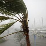 """Hai siêu bão liên tiếp có thể """"thổi bay"""" hàng trăm tỷ USD của Mỹ"""