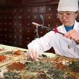 Thị trường thuốc đông y Trung Quốc bùng nổ vì đâu?