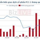PC1: Phát hành riêng lẻ hơn 17 triệu cổ phiếu để tăng vốn