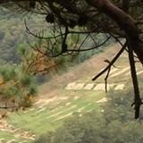 Lính Hàn Quốc bị bắn chết gần biên giới liên Triều