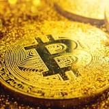 Lý do khiến bạn nên sở hữu bitcoin là gì?
