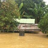 Đà Nẵng: Nước dâng lút mái hàng loạt nhà dân