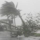 Bão số 1 tấn công các tỉnh đồng bằng Bắc Bộ, gây mưa lớn cho Hà Nội