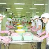Thị trường Trung Quốc: Triển vọng cho xuất khẩu cá tra