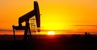 Giá dầu tăng giảm trái chiều sau dự báo của Cơ quan Năng lượng Quốc tế