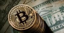 """Tuần này, giá Bitcoin """"bốc hơi"""" gần 1.000 USD"""