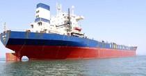 Lỗ lớn nợ nhiều, các hãng tàu biển Việt Nam sẽ sớm tiếp bước Hanjin nộp hồ sơ phá sản?