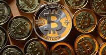 """Đổ xô """"cày"""" Bitcoin bất chấp rủi ro"""
