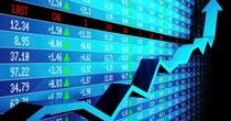 Chứng khoán 24h: Cổ phiếu DBC, MLS thê thảm vì giá lợn lao dốc không phanh