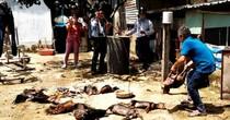 Công ty làm nổ khí NH3 phải bồi thường thiệt hại hàng chục hộ dân