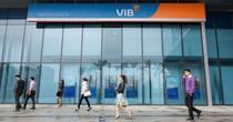 VIB: Lợi nhuận 9 tháng đạt 623 tỷ đồng, hoàn thành 83% kế hoạch năm