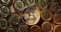 Giá Bitcoin cán ngưỡng 8.000 USD lần đầu tiên trong lịch sử