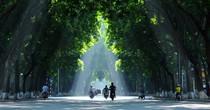 Thời tiết hôm nay 26/5: Bắc Bộ nắng nóng, Nam Bộ mưa dông