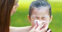 Nghiên cứu lâm sàng lớn nhất thế giới về tác dụng phòng ngừa cảm cúm của Probiotics từ tập đoàn men sống Châu Âu CHR Hansen