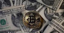 Bitcoin đạt mốc kỷ lục chỉ sau vài ngày sụt giảm 29%