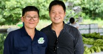Thạc sĩ Tài chính Mỹ về Việt Nam trồng chuối