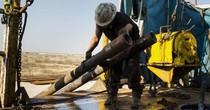 Lượng giàn khoan tăng, giá dầu thô Mỹ đánh mất mốc 50 USD