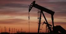 Lo ngại sản lượng Mỹ tăng, giá dầu quay đầu giảm sau 5 phiên tăng