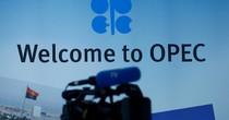 Giá dầu xuôi dốc trước thềm cuộc họp OPEC