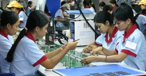 Over 60% of Vietnam Firms Expect Positive Impact from CPTPP: HSBC