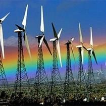 Dự án điện gió không dễ gọi vốn vì giá bán thấp