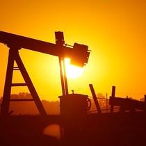 Giá dầu được dự báo sớm chạm mức 55USD/thùng