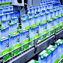 """Nikkei: """"Việt Nam đang bán cổ phần doanh nghiệp nhà nước quá chậm chạp"""""""