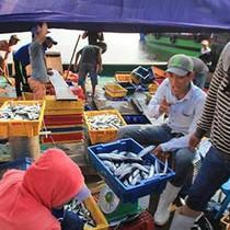 Formosa xả thải gây chết cá hàng loạt