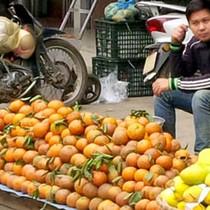 """Cam sành Hà Giang được mùa, rớt giá, nông dân """"đánh bạc với giời"""""""