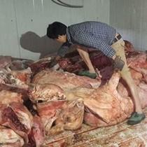 """Bắt giữ trên 4 tấn thịt thối suýt biến thành """"lợn hun khói"""""""
