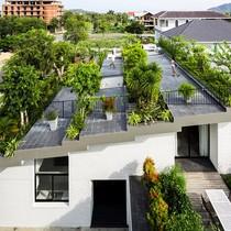 Căn nhà có vườn cây trên mái độc đáo ở Nha Trang