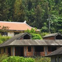 Hàng loạt biệt thự bỏ hoang dưới chân núi Sơn Trà
