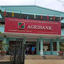 """""""Nữ quái"""" gây vụ lừa trăm tỷ quan hệ thế nào với Agribank Lào Cai?"""