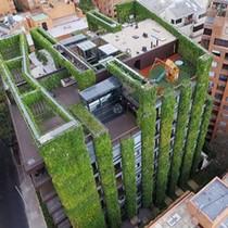 """Tòa nhà 11 tầng xanh mát giữa """"rừng"""" bê tông"""