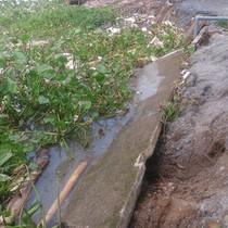 Nhiều căn nhà ở Cần Thơ trôi sông do sạt lở nghiêm trọng
