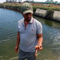 Thủy sản chết ở Khánh Hòa: Doanh nghiệp đền bù 6,6 tỷ đồng