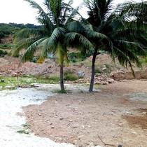 Đà Nẵng: Bùn đất đỏ từ khu du lịch Biển Tiên Sa, Sơn Trà trôi xuống bờ biển