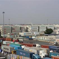 Gần 500.000 tấn điều kẹt cảng, doanh nghiệp như ngồi trên lửa