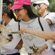 Tận hưởng lịch trình 3 ngày đến Quy Nhơn ngắm cảnh, ăn ngon và chơi sang