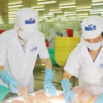 Vietnam Holding Limited thành cổ đông lớn của HVG