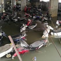 """Mùi hôi, nước ngập """"bao vây"""" bất động sản Sài Gòn"""