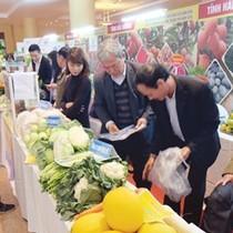 """90% nông sản Việt xuất khẩu phải """"mượn danh"""""""